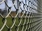 Заборы,  ворота,  калитки из сетки рабицы