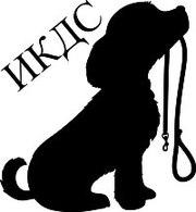 Дрессировка собак в Гомеле,  в Речице