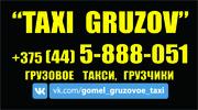 грузовое такси Гомель
